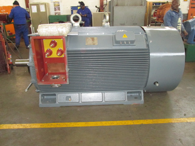 New WEM Medium Voltage electric motors - test